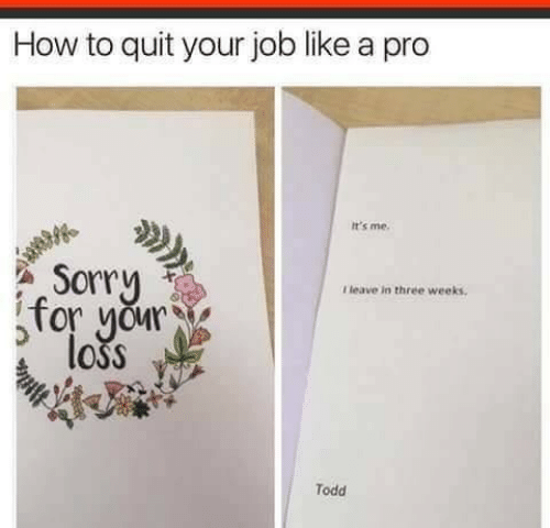 todd: How to quit your job like a pro  It's me.  Sorry  for your  loss  Tleave in three weeks  Todd