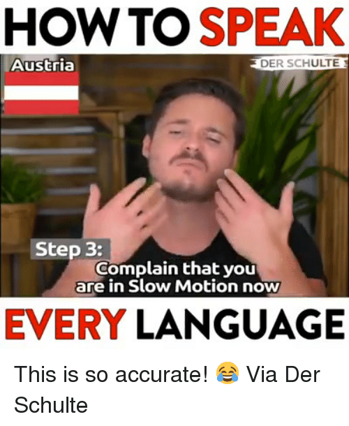Slow Motion, How To, and Austria: HOW TO SPEAK  Austria  DER SCHULTE  Step 3:  Complain that you  are in Slow Motion now  EVERY LANGUAGE This is so accurate! 😂  Via Der Schulte