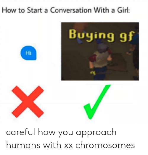 How To Start A Conversation With A Girl: How to Start a Conversation With a Girl:  Buying gf  Hi careful how you approach humans with xx chromosomes