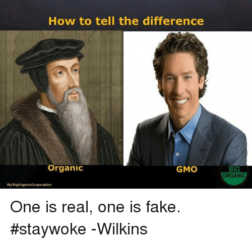 Wilkins: How to tell the difference  Organic  GMO  fb/BigorganicCorporation  BIG  ORGANIC One is real, one is fake. #staywoke  -Wilkins