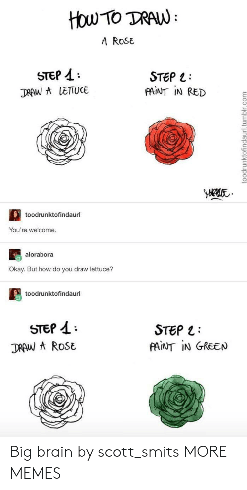 Dank, Memes, and Target: How TO TRAW  A ROSE  STEP  STEP  FAINT IN RED  DRAW A LETTUCE  toodrunktofindaurl  You're welcome.  alorabora  Okay. But how do you draw lettuce?  toodrunktofindaurl  STEP  DRAW AROSE  STEP  PAINT IN GREEN  toodrunktofindaurl.tumblr.com Big brain by scott_smits MORE MEMES