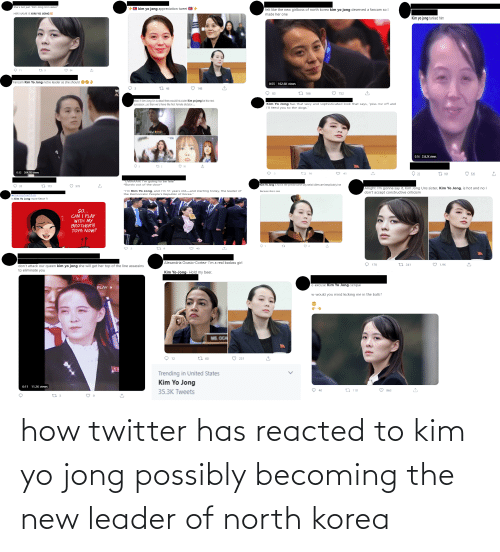 Possibly: how twitter has reacted to kim yo jong possibly becoming the new leader of north korea