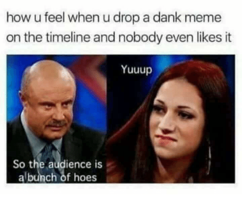 Dank, Hoes, and Meme: how u feel when u drop a dank meme  on the timeline and nobody even likes it  Yuuup  So the audience is  albunch of hoes