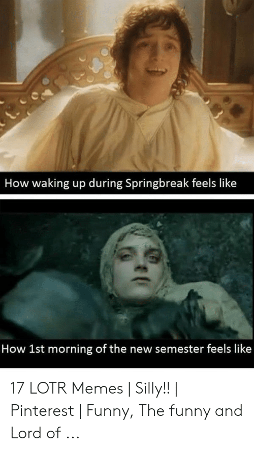 funny lotr: How waking up during Springbreak feels like  How 1st morning of the new semester feels like 17 LOTR Memes | Silly!! | Pinterest | Funny, The funny and Lord of ...