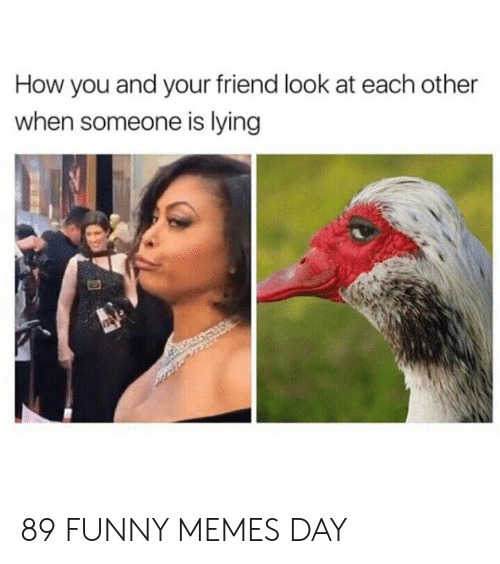 Funny, Memes, and Lying: How you and your friend look at each other  when someone is lying 89 FUNNY MEMES DAY