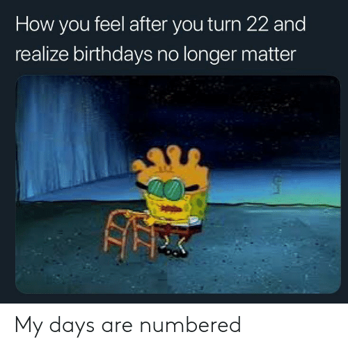 How You Feel: How you feel after you turn 22 and  realize birthdays no longer matter My days are numbered