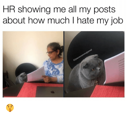 i hate my job: HR showing me all my posts  about how much I hate my job  @jesuscommajamal 🤫