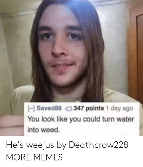Dank, Memes, and Target: HSaved88 347 points 1 day ago  You look like you could turn water  into weed. He's weejus by Deathcrow228 MORE MEMES