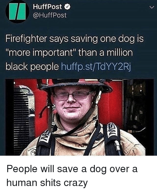 """Crazy, Black, and Firefighter: HuffPost  @HuffPost  Firefighter says saving one dog is  more important"""" than a million  black people huffp.st/TdYY2Rj People will save a dog over a human shits crazy"""