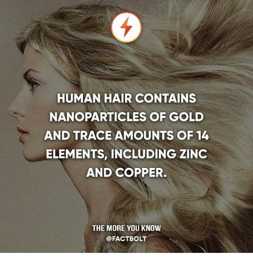 tracee: HUMAN HAIR CONTAINS  NANOPARTICLES OF GOLD  AND TRACE AMOUNTS OF 14  ELEMENTS, INCLUDING ZINC  AND COPPER.  THE MORE YOU KNOW  @FACTBOLT