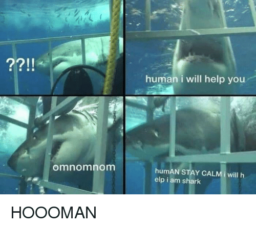 Shark, Help, and Human: human i will help you  omnomnomm  humAN STAY CALMİ will h  elp i am shark HOOOMAN