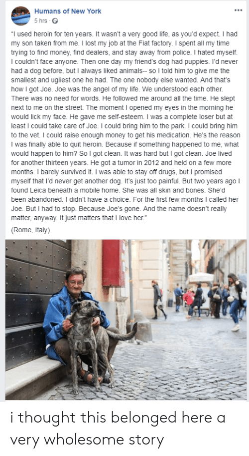 "Would Happen: Humans of New York  5 hrs  ""I used heroin for ten years. It wasn't a very good life, as you'd expect. I had  my son taken from me. I lost my job at the Fiat factory. I spent all my time  trying to find money, find dealers, and stay away from police. I hated myself.  I couldn't face anyone. Then one day my friend's dog had puppies. I'd never  had a dog before, but I always liked animals- so I told him to give me the  smallest and ugliest one he had. The one nobody else wanted. And that's  how I got Joe. Joe was the angel of my life. We understood each other.  There was no need for words. He followed me around all the time. He slept  next to me on the street. The moment I opened my eyes in the morning he  would lick my face. He gave me self-esteem. I was a complete loser but at  least I could take care of Joe. I could bring him to the park. I could bring him  to the vet. I could raise enough money to get his medication. He's the reason  I was finally able to quit heroin. Because if something happened to me, what  would happen to him? So I got clean. It was hard but I got clean. Joe lived  for another thirteen years. He got a tumor in 2012 and held on a few more  months. I barely survived it. I was able to stay off drugs, but I promised  myself that I'd never get another dog. It's just too painful. But two years ago I  found Leica beneath a mobile home. She was all skin and bones. She'd  been abandoned. I didn't have a choice. For the first few months I called her  Joe. But I had to stop. Because Joe'ss gone. And the name doesn't really  matter, anyway. It just matters that I love her.""  (Rome, Italy) i thought this belonged here a very wholesome story"