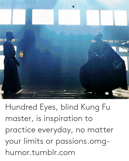 kung fu master: Hundred Eyes, blind Kung Fu master, is inspiration to practice everyday, no matter your limits or passions.omg-humor.tumblr.com