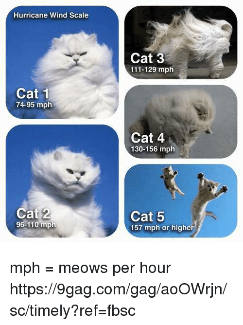 9gag, Andrew Bogut, and Dank: Hurricane Wind Scale  Cat 3  111-129 mph  Cat 1  74-95 mplh  Cat 4  130-156 mph  Cat 2  96-110 mph  Cat 5  157 mph or higher mph = meows per hour https://9gag.com/gag/aoOWrjn/sc/timely?ref=fbsc