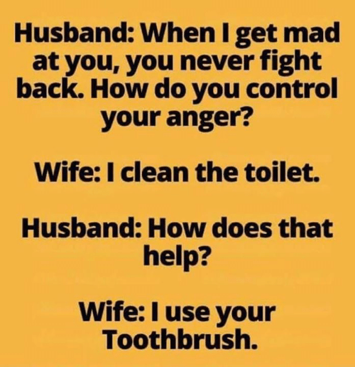 Memes, Control, and Help: Husband: When I get mad  at you, you never fight  back. How do you control  your anger?  Wife: I clean the toilet.  Husband: How does that  help?  Wife: I use your  Toothbrush.