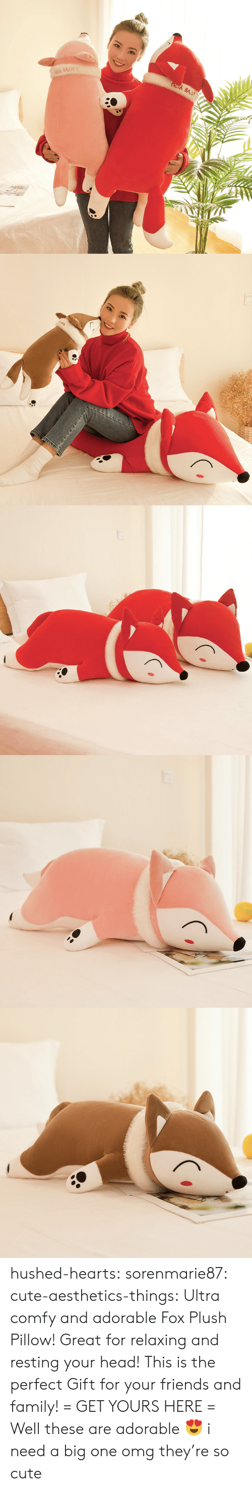Cute, Family, and Friends: hushed-hearts:  sorenmarie87:  cute-aesthetics-things:  Ultra comfy and adorable Fox Plush Pillow! Great for relaxing and resting your head! This is the perfect Gift for your friends and family! = GET YOURS HERE =   Well these are adorable 😍  i need a big one omg they're so cute