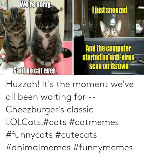 classic: Huzzah! It's the moment we've all been waiting for -- Cheezburger's classic LOLCats!#cats #catmemes #funnycats #cutecats #animalmemes #funnymemes