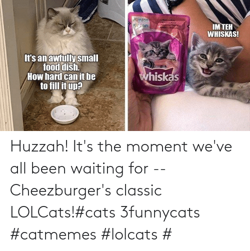 classic: Huzzah! It's the moment we've all been waiting for -- Cheezburger's classic LOLCats!#cats 3funnycats #catmemes #lolcats #