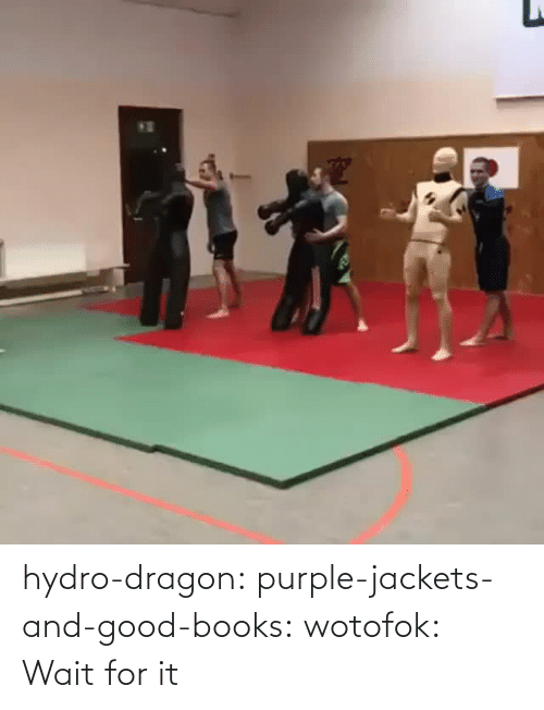 Row: hydro-dragon: purple-jackets-and-good-books:  wotofok:  Wait for it