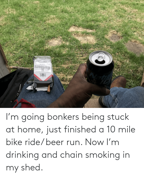 shed: I'm going bonkers being stuck at home, just finished a 10 mile bike ride/ beer run. Now I'm drinking and chain smoking in my shed.