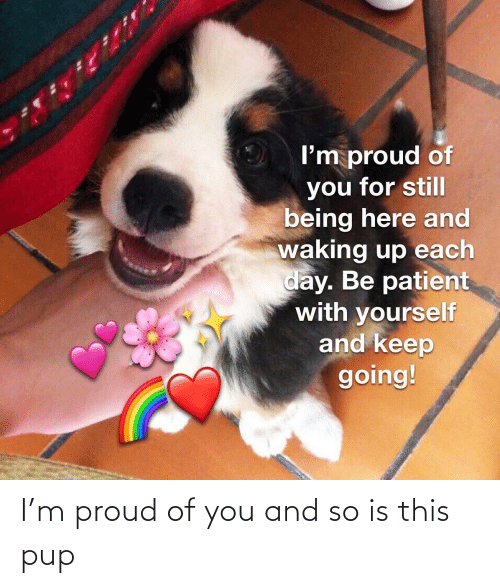 Proud Of You: I'm proud of you and so is this pup