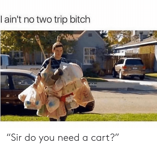 "Bitch, Memes, and 🤖: I ain't no two trip bitch  du ""Sir do you need a cart?"""