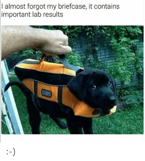 Dank, 🤖, and  Almost: I almost forgot my briefcase, it contains  important lab results :-)