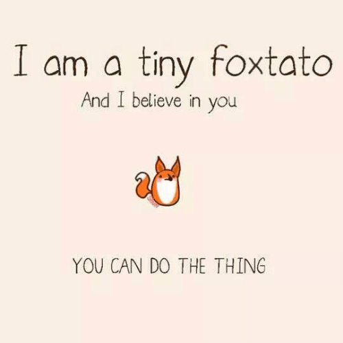 i believe in you: I am a tiny foxtato  And I believe in you  YOU CAN DO THE THING