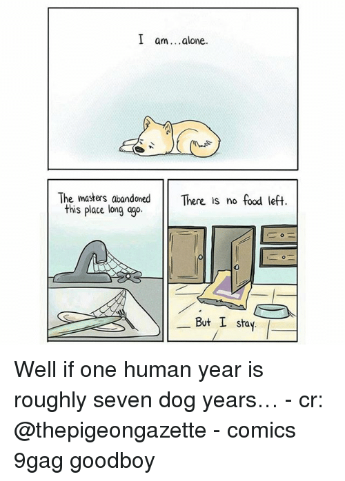 Goodboy: I am. .alone.  The masters, abandoned There is no food left  this place long ago  0  But I stay Well if one human year is roughly seven dog years… - cr: @thepigeongazette - comics 9gag goodboy