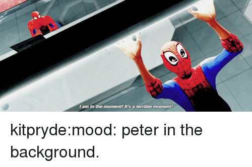 Mood, Tumblr, and Blog: I am in the moment! It's a terrible moment! kitpryde:mood: peter in the background.