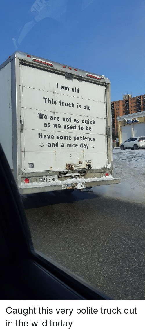 Patience, Today, and Wild: I am old  This truck is old  We are not as quick  as we used to be  Have some patience  and a nice day  ONTARIO  AD 81605 Caught this very polite truck out in the wild today