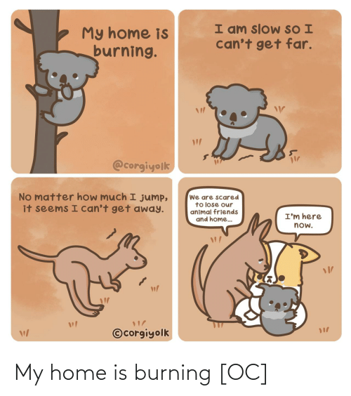 i cant: I am slow SO I  can't get far.  My home is  burning.  @corgiyolk  No matter how much I jump,  it seems I can't get away.  We are scared  to lose our  animal friends  and home..  I'm here  now.  ©corgiyolk My home is burning [OC]