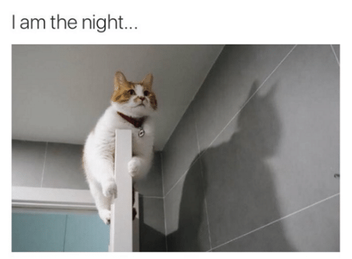 I Am The Night: I am the night...