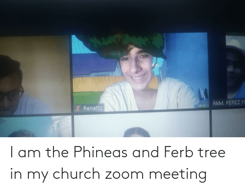 Church: I am the Phineas and Ferb tree in my church zoom meeting