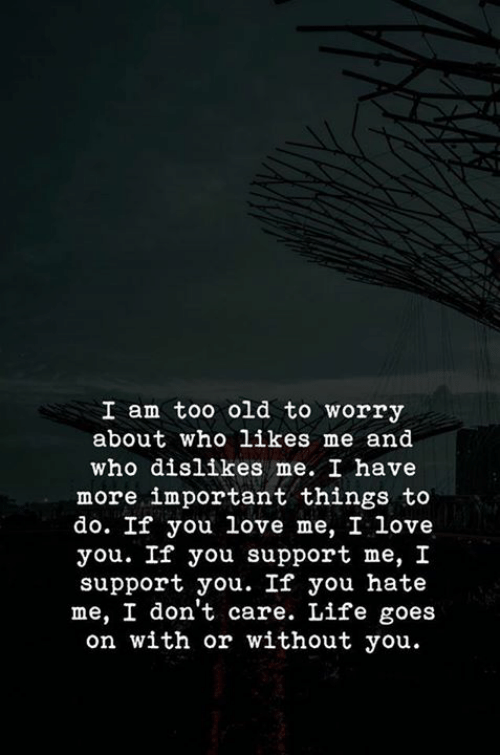 Supporter: I am too old to worry  about who likes me and  who dislikes me. I have  more important things to  do. If you love me, I love  you. If you support me, I  support you. If you hate  me, I don't care. Life goes  on with or without you.