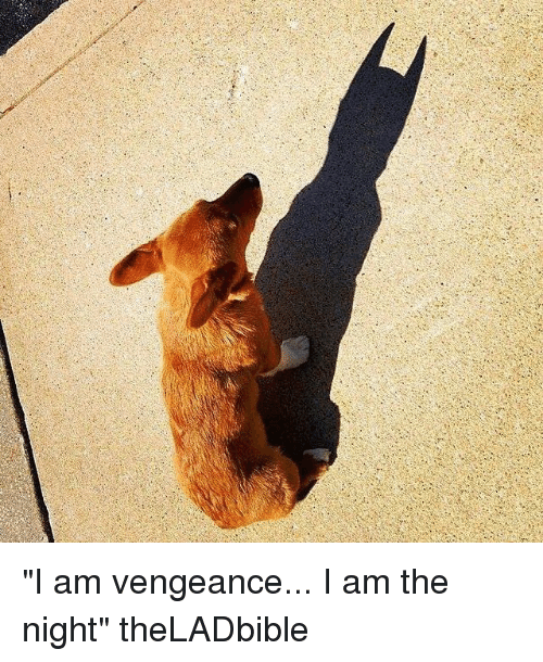 "I Am The Night: ""I am vengeance... I am the night"" theLADbible"