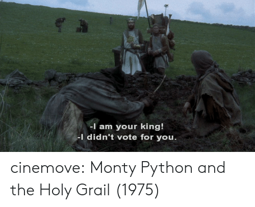 monty python: -I am your king!  I didn't vote for you cinemove: Monty Python and the Holy Grail (1975)