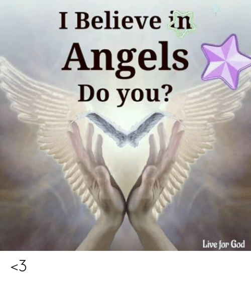 God, Memes, and Angels: I Believe in  Angels  Do you?  Live for God <3
