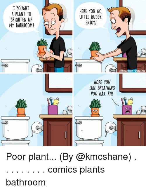 little buddy: I BOUGHT  A PLANT TO  BRIGHTEN UP  MY BATHROOM!  HERE YOU GO,  LITTLE BUDDY.  ENJOY  (「  @kmcshane BuzzFeed  HOPE YOU  LIKE BREATHING  POO GAS, KID. Poor plant... (By @kmcshane) . . . . . . . . . comics plants bathroom