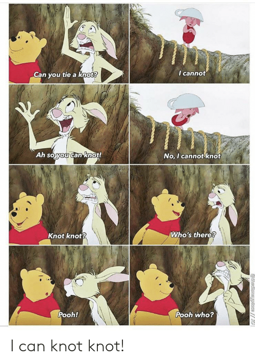 Who, Can, and You: I cannot  Can you tie a knot?  Ah soyou canknot!  No, I cannot knot  @thediencyplacNG  Who's there?  Knot knot?  Pooh!  Pooh who?  athedisneyplace// I can knot knot!