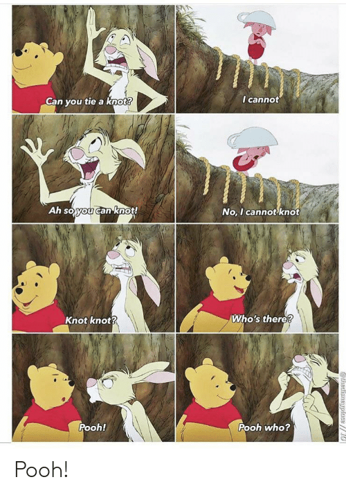 Who, Can, and You: I cannot  Can you tie a knot?  Ah soyou canknot!  No, I cannot knot  @thediencyplacNG  Who's there?  Knot knot?  Pooh!  Pooh who?  athedisneyplace// Pooh!