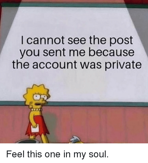 Memes, 🤖, and Private: I cannot see the post  you sent me because  the account was private Feel this one in my soul.