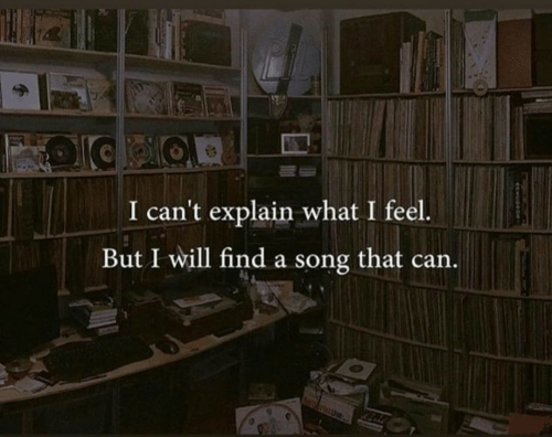 A Song, Song, and Can: I can't explain what I feel.  But I will find a song that can
