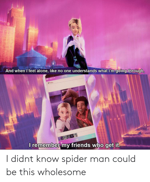 Could: I didnt know spider man could be this wholesome