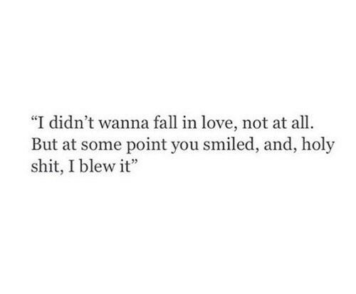 """Blew: """"I didn't wanna fall in love, not at all  But at some point you smiled, and, holy  shit, I blew it"""
