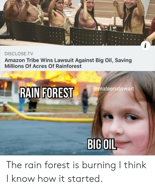 Lawsuit: i  DISCLOSE.TV  Amazon Tribe Wins Lawsuit Against Big Oil, Saving  Millions Of Acres Of Rainforest  @mateenstewart  RAIN FOREST  BIG OIL The rain forest is burning I think I know how it started.