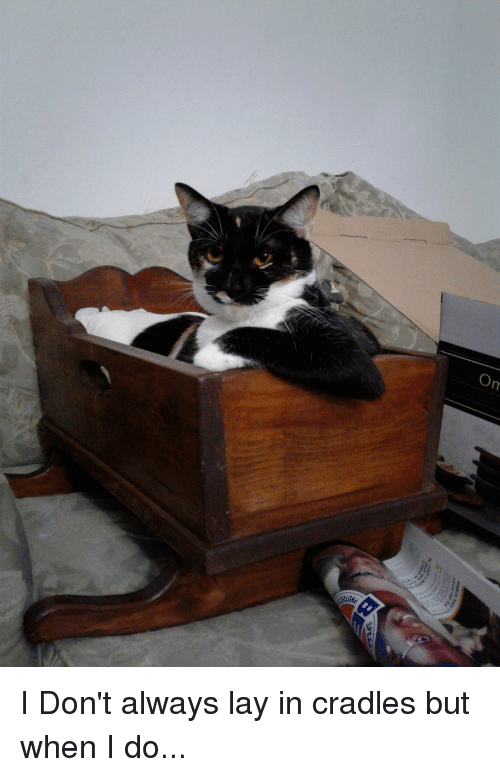 I Dont Always, Always, and But When I Do: I Don't always lay in cradles but when I do...