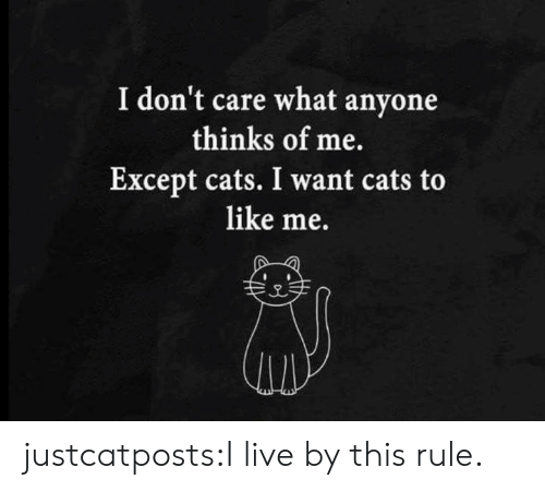 Cats, Target, and Tumblr: I don't care what anyone  thinks of me.  Except cats. I want cats to  like me. justcatposts:I live by this rule.