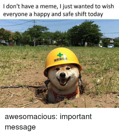 Meme, Tumblr, and Blog: I don't have a meme, I just wanted to wish  everyone a happy and safe shift today  柴尻保存会 awesomacious:  important message