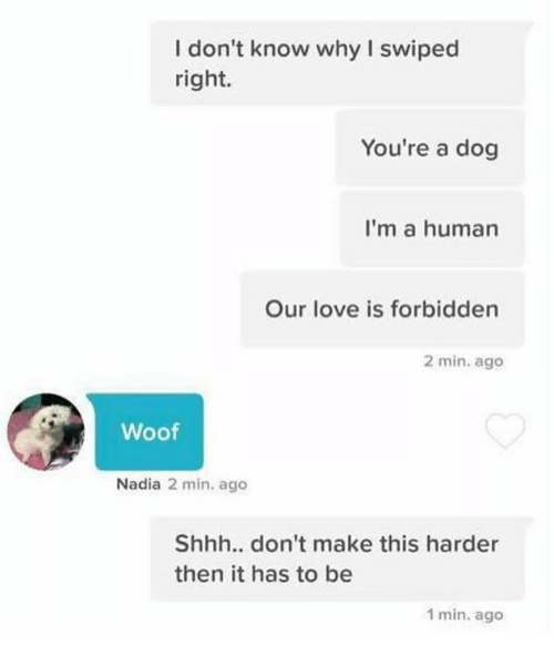 Nadia: I don't know why I swiped  right.  You're a dog  I'm a human  Our love is forbidden  2 min. ago  Woof  Nadia 2 min. ago  Shhh.. don't make this harder  then it has to be  1 min. ago